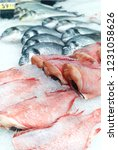 assortment of the sea fish | Shutterstock . vector #1231058626