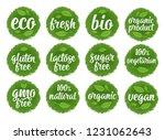gluten  lactose  sugar  gmo... | Shutterstock .eps vector #1231062643