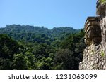 ancient mayan stone wall in the ... | Shutterstock . vector #1231063099