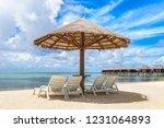 maldives   june 24  2018 ...   Shutterstock . vector #1231064893