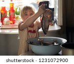 the child holding the tail of... | Shutterstock . vector #1231072900