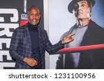 new york  ny   november 14 ... | Shutterstock . vector #1231100956