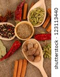 nutmeg and other spices on... | Shutterstock . vector #123113440