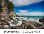 restless black sea and blue sky.... | Shutterstock . vector #1231217416