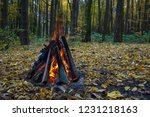 bonfire in the autumn forest | Shutterstock . vector #1231218163