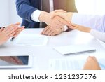 group of business people or... | Shutterstock . vector #1231237576