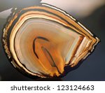 slice of translucent agate... | Shutterstock . vector #123124663