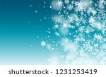 background for new year... | Shutterstock .eps vector #1231253419