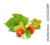 fresh grapes  nutritious and... | Shutterstock .eps vector #1231262389