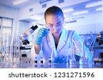 young scientist working in...   Shutterstock . vector #1231271596
