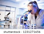 young scientist working in... | Shutterstock . vector #1231271656