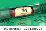 magnesium mg element in the... | Shutterstock . vector #1231288123