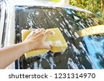 clean the car with a sponge and ... | Shutterstock . vector #1231314970