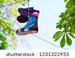 color footwear hangs against... | Shutterstock . vector #1231322953