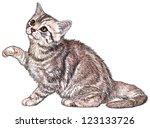 Ink   Wash Kitten Illustration