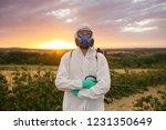 weed control. industrial... | Shutterstock . vector #1231350649