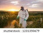weed control. industrial... | Shutterstock . vector #1231350679