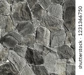 fragment of a wall from a...   Shutterstock . vector #1231366750