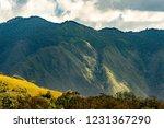rural mountain view  natural... | Shutterstock . vector #1231367290