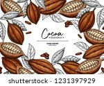 cocoa frame. vector superfood... | Shutterstock .eps vector #1231397929