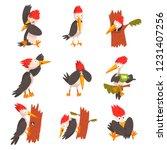 Cute Woodpecker Set  Funny Bir...