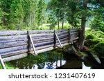woodbridge in the  forest | Shutterstock . vector #1231407619