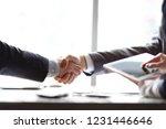 handshake of business partners... | Shutterstock . vector #1231446646