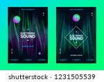 techno music poster. wave flyer ... | Shutterstock .eps vector #1231505539