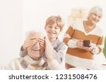 grandson playing hide and seek... | Shutterstock . vector #1231508476