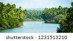 alleppey's backwater  beautiful ... | Shutterstock . vector #1231513210