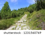 Stone Pathway In Mountains ...