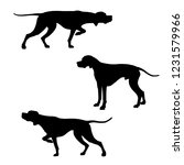 Stock vector english pointer dogs silhouettes vector illustration isolated on white background 1231579966