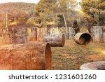 dynamic paintball battle. group ... | Shutterstock . vector #1231601260
