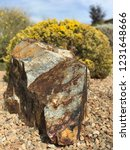 textured boulder landscaping | Shutterstock . vector #1231648666