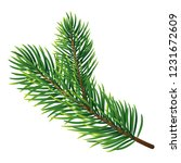 pine tree branch icon.... | Shutterstock .eps vector #1231672609