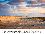 sand dunes and clouds at... | Shutterstock . vector #1231697749