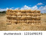 wall pattern with straw bales...   Shutterstock . vector #1231698193