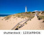 wooden footpath with sand to...   Shutterstock . vector #1231698436