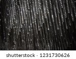 defocused gray black and white...   Shutterstock . vector #1231730626