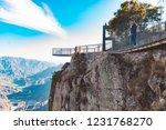 girl walking on the bridge over ... | Shutterstock . vector #1231768270