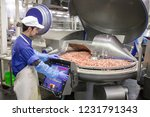 the meat in the grinder. the... | Shutterstock . vector #1231791343