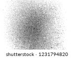 abstract background. monochrome ... | Shutterstock . vector #1231794820