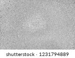 abstract background. monochrome ... | Shutterstock . vector #1231794889