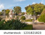 ajuda botanical garden  jardim... | Shutterstock . vector #1231821823