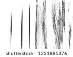 abstract background. monochrome ... | Shutterstock . vector #1231881376