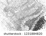 abstract background. monochrome ... | Shutterstock . vector #1231884820