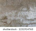 texture unique in wall old ... | Shutterstock . vector #1231914763