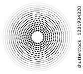 concentric round geometric... | Shutterstock .eps vector #1231934320