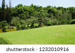green lawn  forest and blue sky | Shutterstock . vector #1232010916