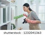 asian housekeeper in apron...   Shutterstock . vector #1232041363